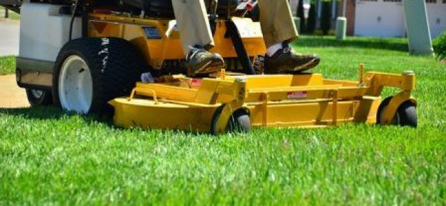 Wokingham Grass Cutting Plans for 2017 Addressing issues of 2016