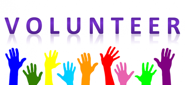 Library Volunteer Celebration