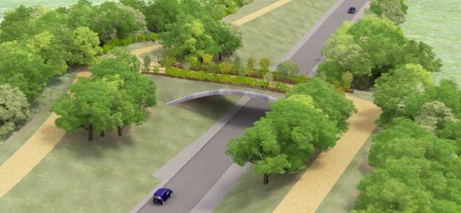 Construction Starts This Summer On Arborfield Cross Relief Road (ACRR)