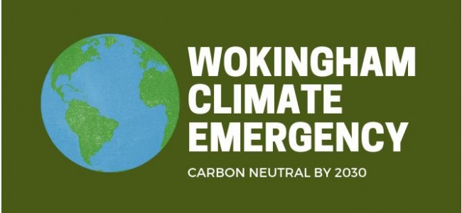 Wokingham Council Set Target To Be Carbon Neutral By 2030