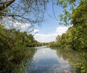 Dam Improvements at California Country Park