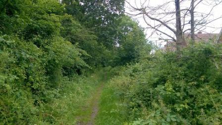 Keephatch Footpath - Wokingham