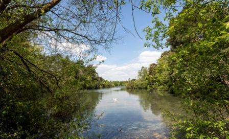 Dam Improvements - California Country Park