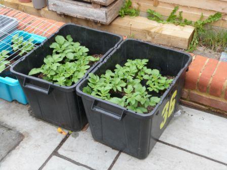 Wokingham Waterproof Recycling Bags - uses of